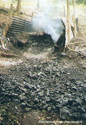 Four à charbon (tous droits réservés)
